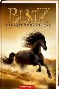 Bild von Blitz Band 2 / Der schwarze Hengst kehr